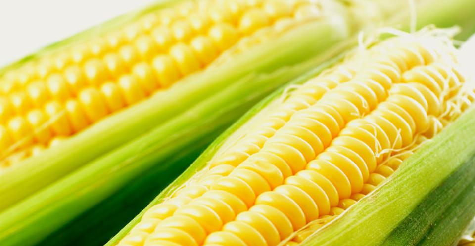 Как коптить кукурузу